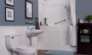 Walk in bathtub reviews, prices for seniors and people with disabilites